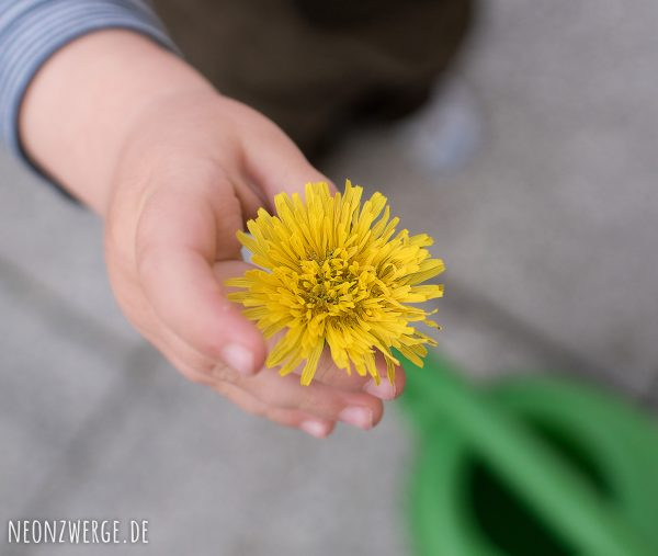 Mit Kindern in der Stadt -Stadtleben - Löwenzahn - Natur Kinder