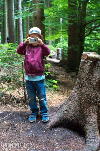 Fotokind - Mit Kindern im Wald - Pilze sammeln