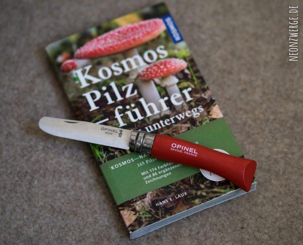 Pilzführer - Bestimmungsbuch Pilze -